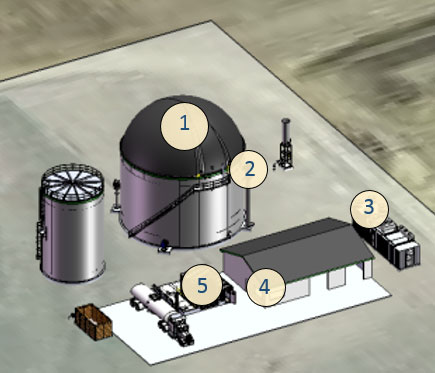 anaerobic digestion